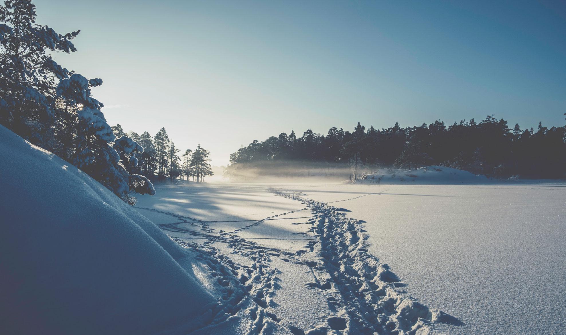Vakantiehuis Zweden - uitzicht in de sneeuw